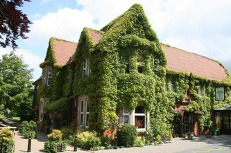Hotel covered in green ivy